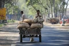 2011-03-22-India-117