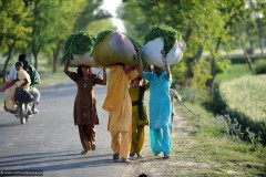 2011-03-22-India-472