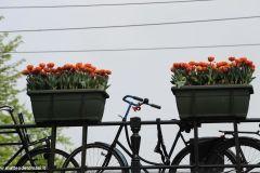 2014-04-30-Amsterdam-108