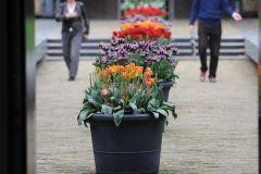 2014-04-30-Amsterdam-226